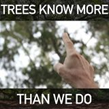 Trees know more